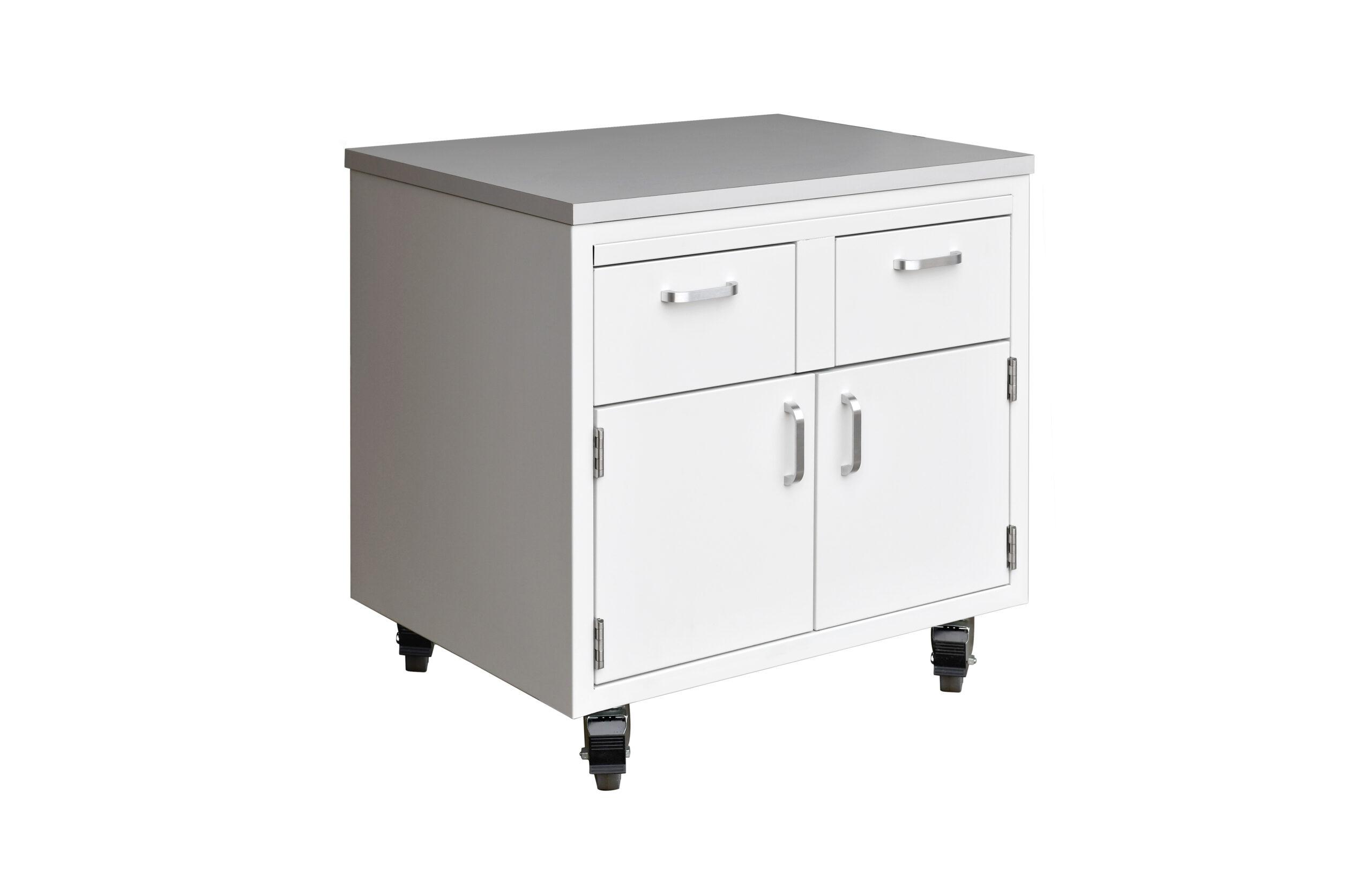 Mobile Cabinet 1